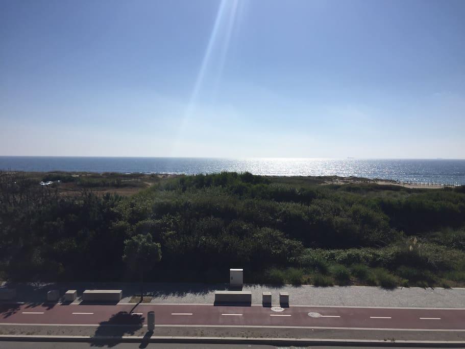 As vistas de mar/the seaviews