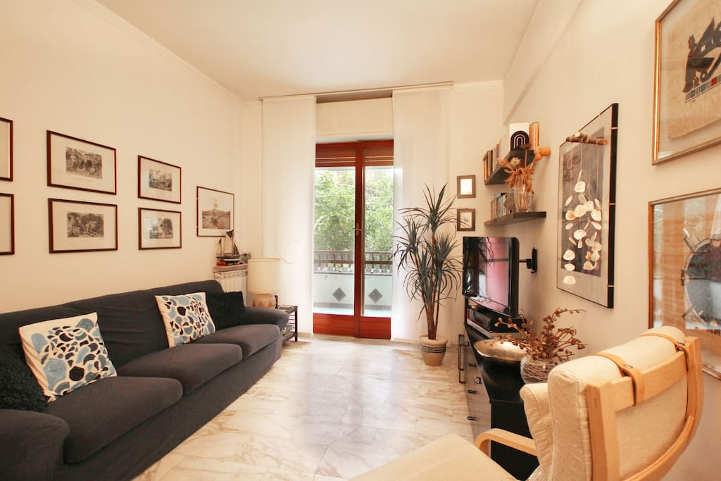 Comfortable and quiet living room with access on the balcony. TV. Sofa with double bed.