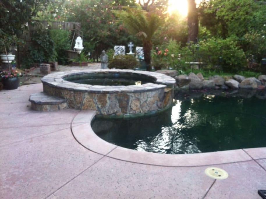 Serene and natural back yard