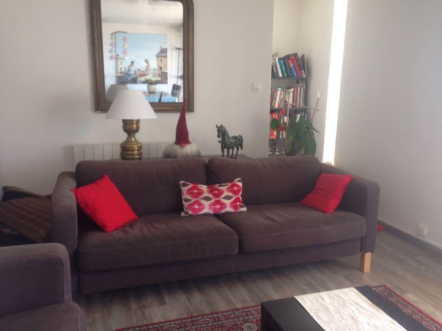 Séjour avec 2 canapés pouvant servir de lit 1 personne