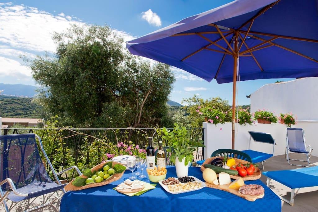 La Vignaredda - Residenza di Charme - Aggius - Terrazzo panoramico appartamento Palme e Pavoni