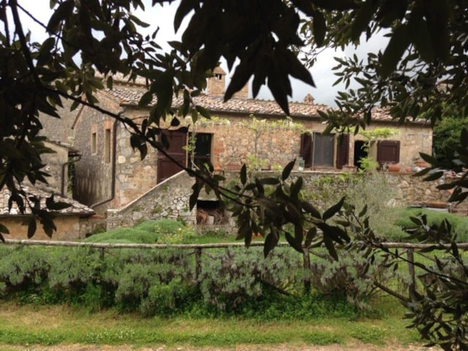 Le case viste dall'albero di leccio sotto il quale rilassarsi