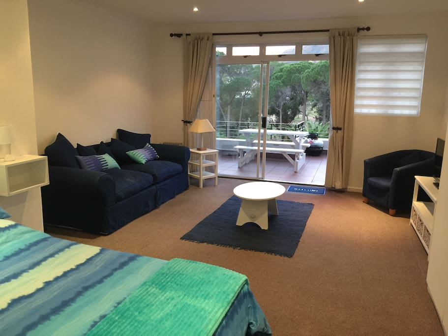 Spacious Lounge /bedroom leading onto large patio with BBQ and table with benches