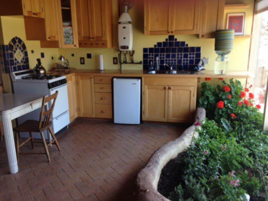 Kitchen view with indoor planter