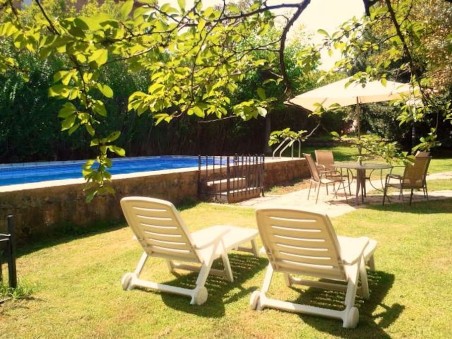The pool and garden, shared with host.