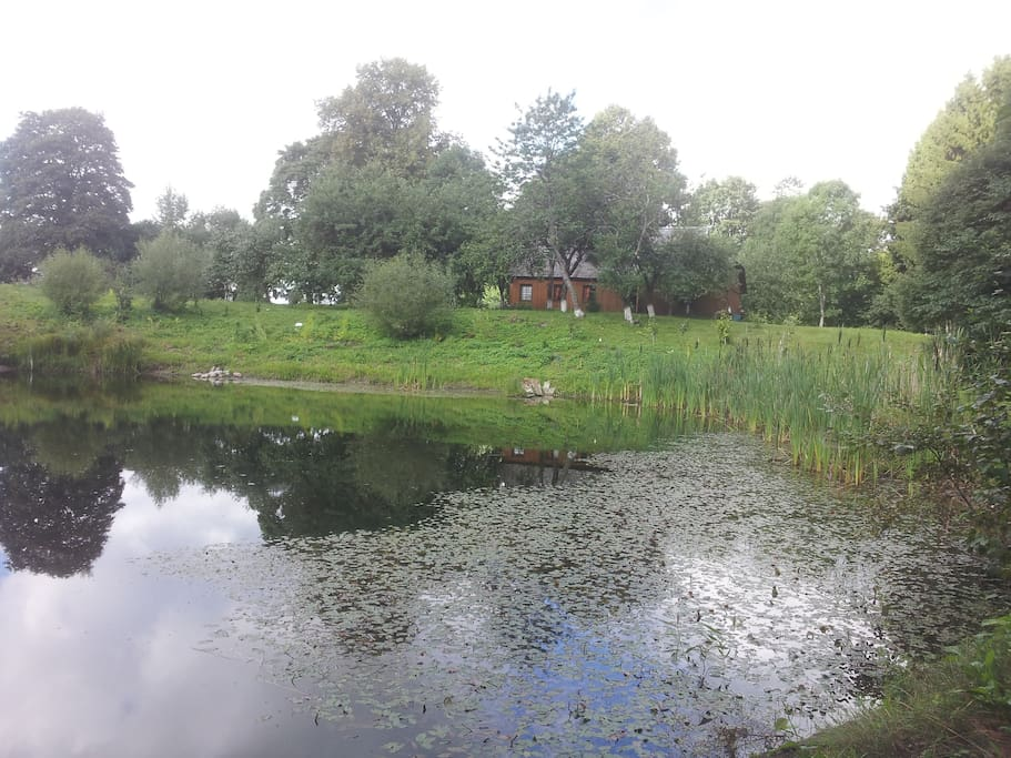 Pond and the view to the house