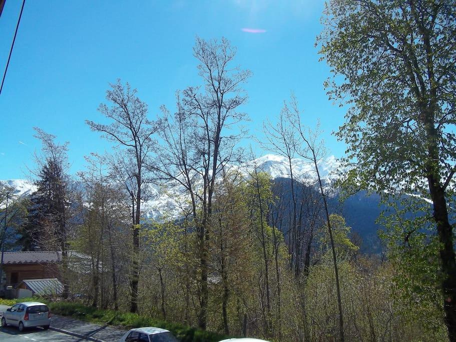 Vue sur la chaine du Mont-Blanc.