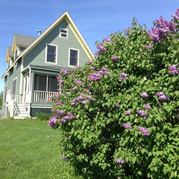Front of our house in the spring.