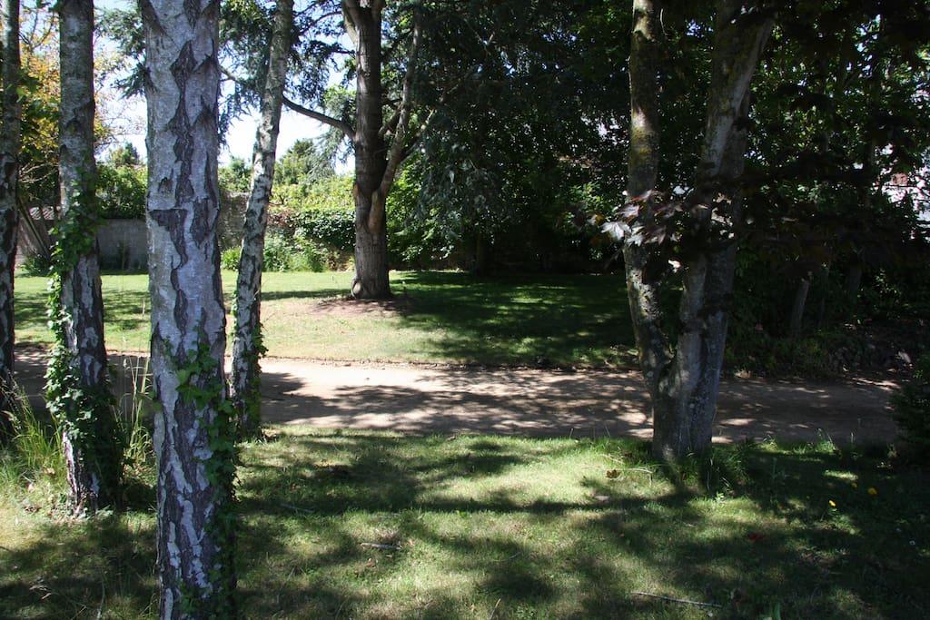 Le parc devant la maison