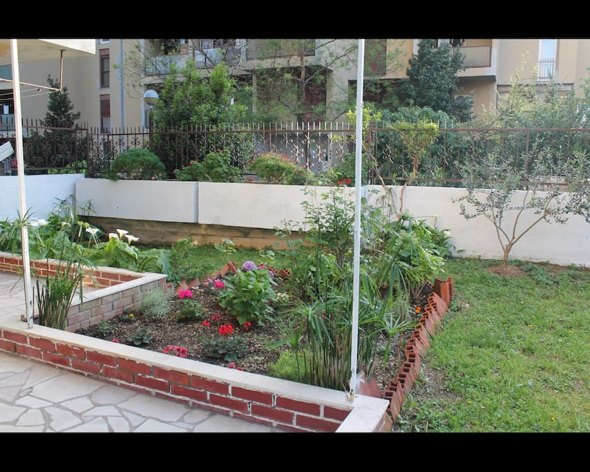 The front part of the garden