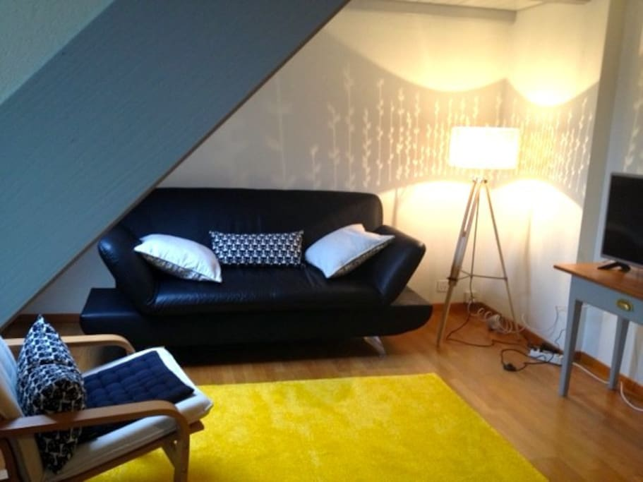 Wohnzimmer mit Sofa&TV / Living Room with Couch&TV