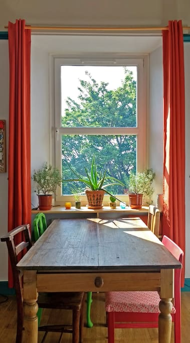 Our sunny window.